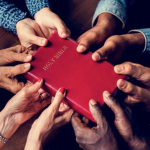 diverse hands holding the Bible
